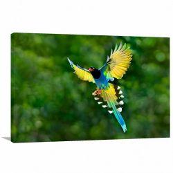 Quadro decorativo - Pássaro Paisagem - Tela em Tecido