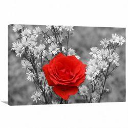 Quadro decorativo Flores - Paisagem - Tela em Tecido Canvas