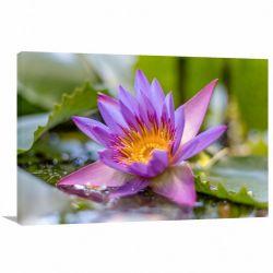 Quadro decorativo Flores - Paisagem Natureza - Tela em Tecido
