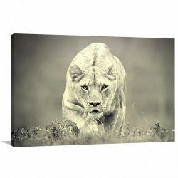 Quadro Decorativo - Animais - Natureza - Tela em Tecido