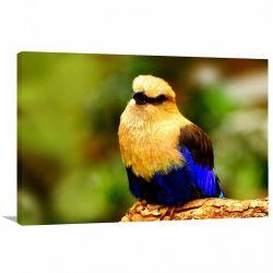 Quadro decorativo Paisagem - Pássaro - Natureza - Tela em Tecido